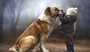 animal-children-fotografia