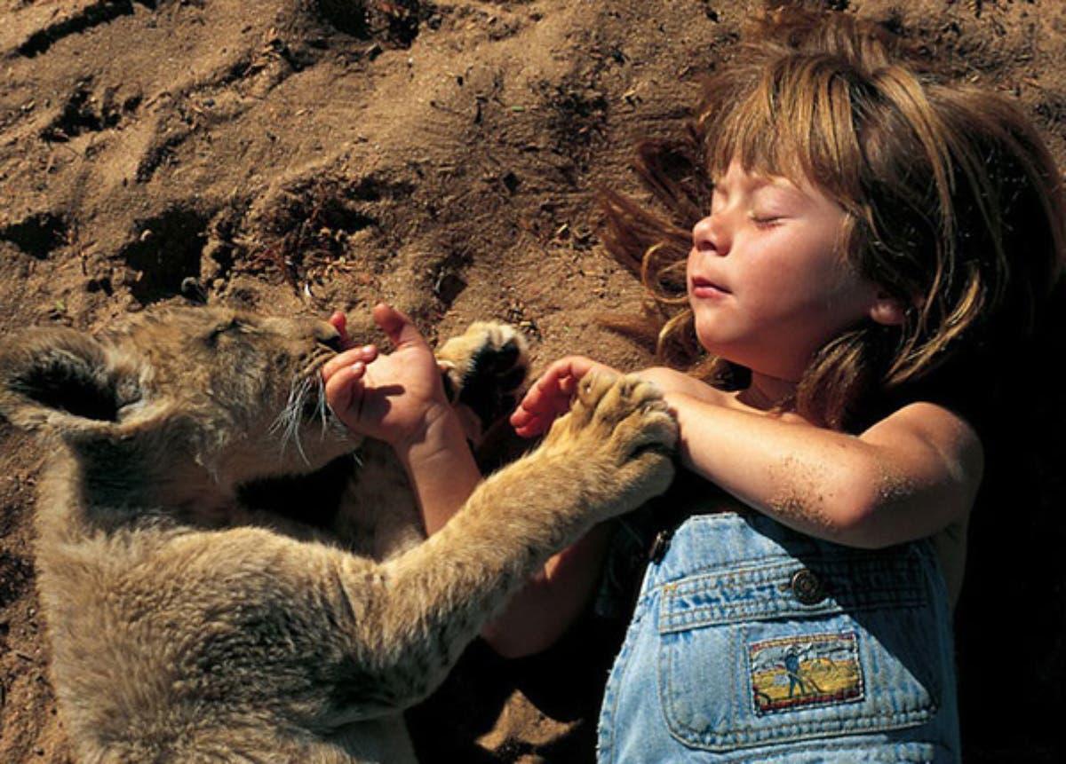tippi-africa-sleeping-lion-cub-pic-photo