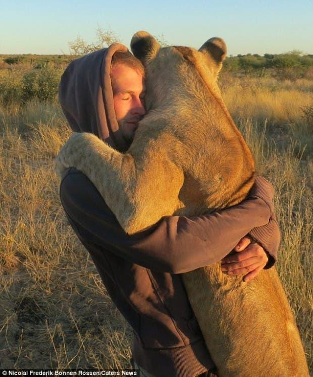 lion-hugs