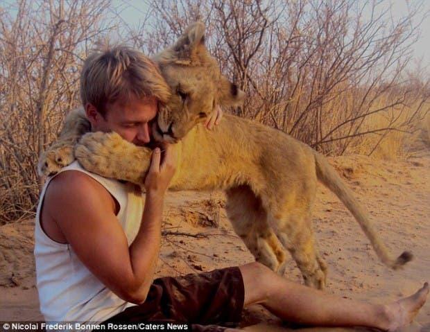 lion-hugs4