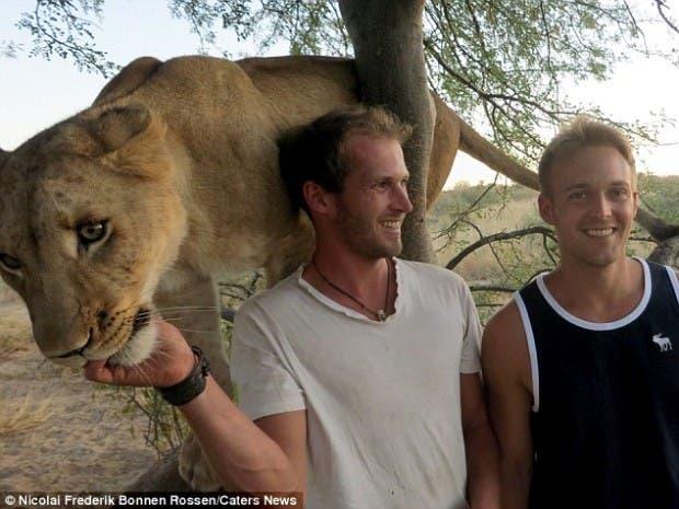 lion-hugs7