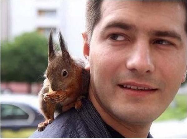 officer-squirrel