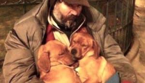 vagabundo-con-perritos