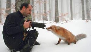 zorro-con-fotografo