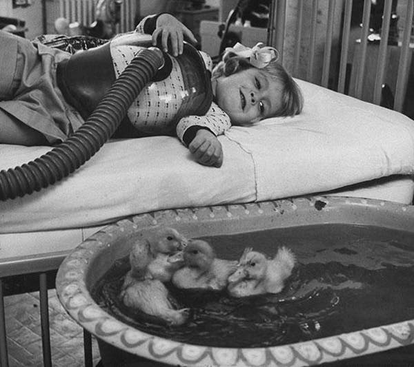04-Animals-being-used-as-part-of-medical-therapy-1956