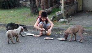 ken-nino-da-comer-perros