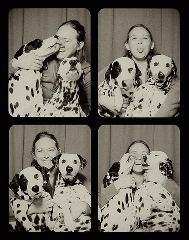 pit-bull-photo-booth-love-5