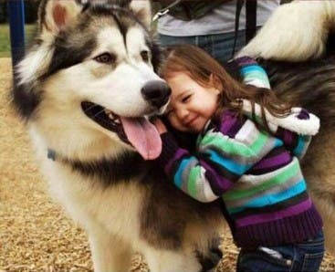 fotos-hijo-mascota copia 14