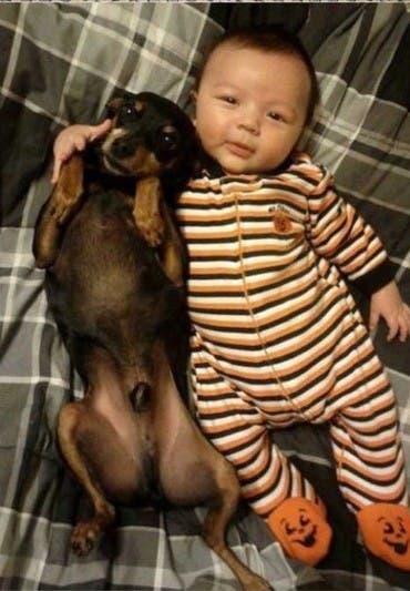fotos-hijo-mascota copia 3