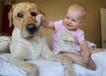 fotos-hijo-mascota copia 5