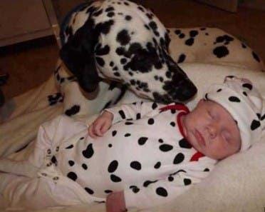 fotos-hijo-mascota copia 6
