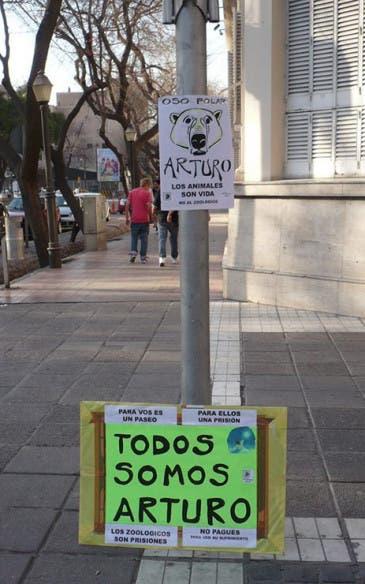 Arturo10
