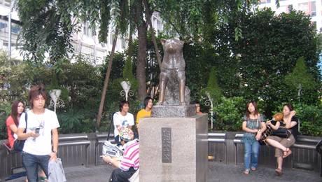 Hachiko_07_2008