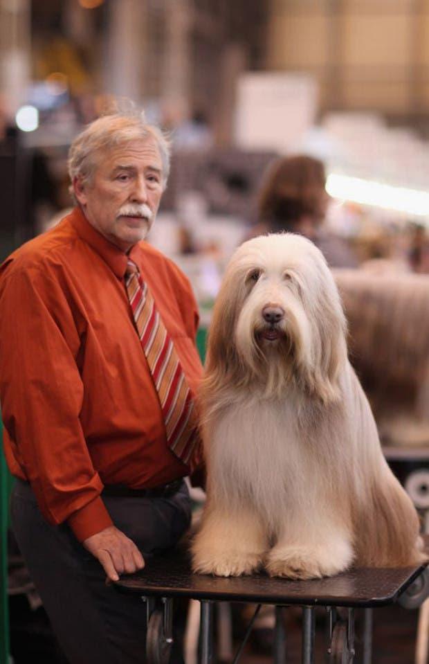dueños y perros 12