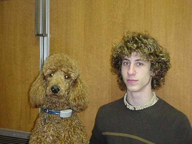 dueños y perros 16