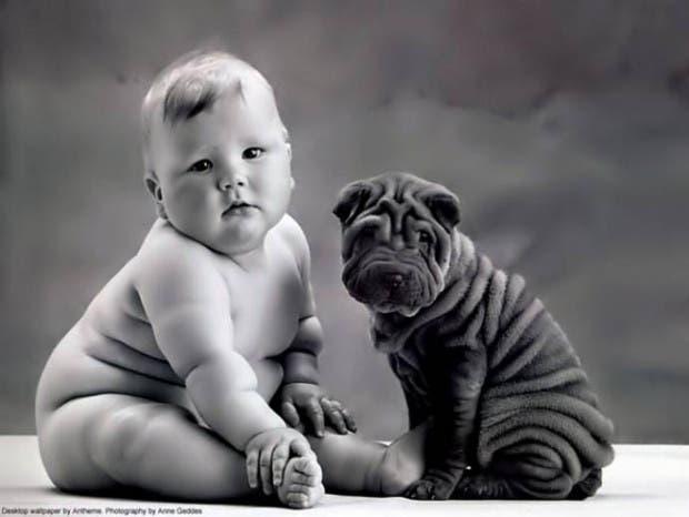 dueños y perros 4