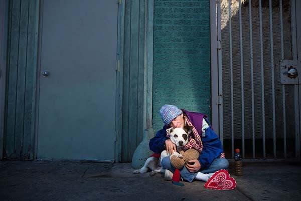 vagabundos y sus perros1