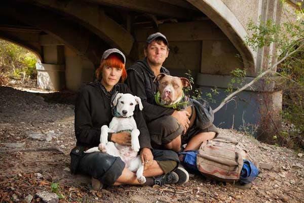 vagabundos y sus perros2