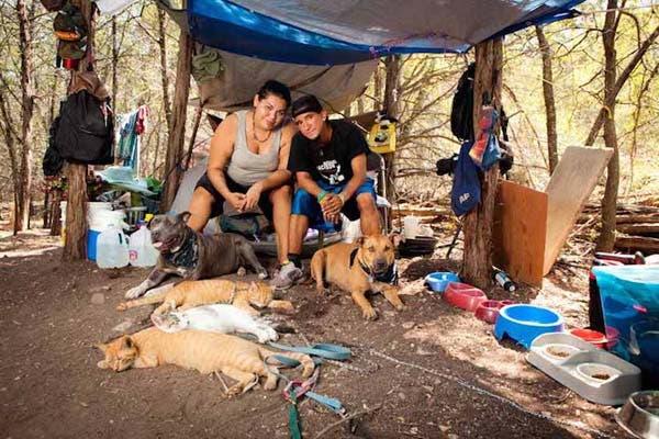 vagabundos y sus perros3