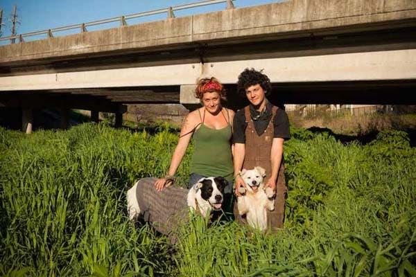 vagabundos y sus perros7