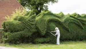 dragon-jardin
