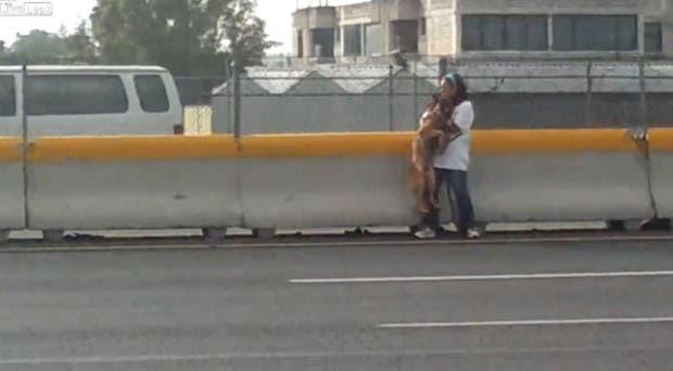 mujer-rescata-perro-autopista-ciudad-de-mexico