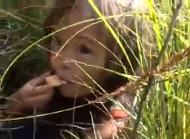 perro-encuentra-a-nina-perdida-de-3-anos