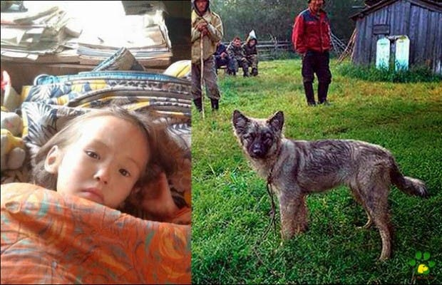 perro salva nina