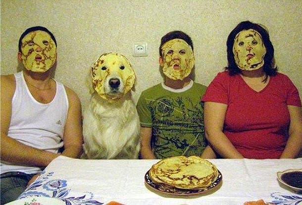 perros astutos20