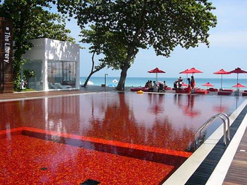 piscinas espectaculares10