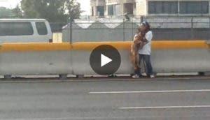 rescate-perro-autopista-mexico-play