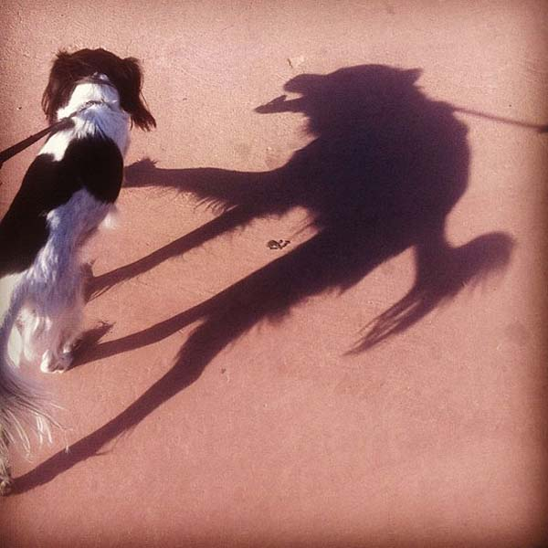 sombras20