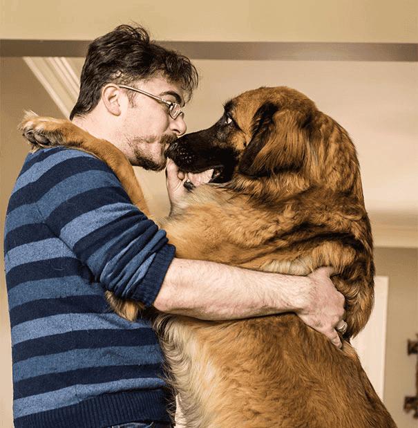 abrazo-perro