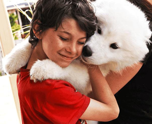 abrazo-perro14