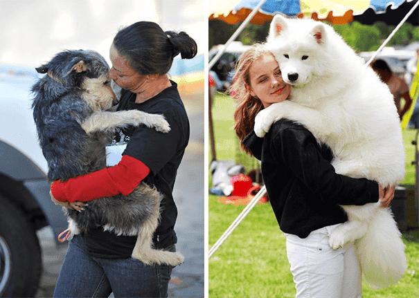 abrazo-perro2