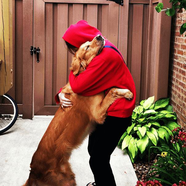 abrazo-perro27