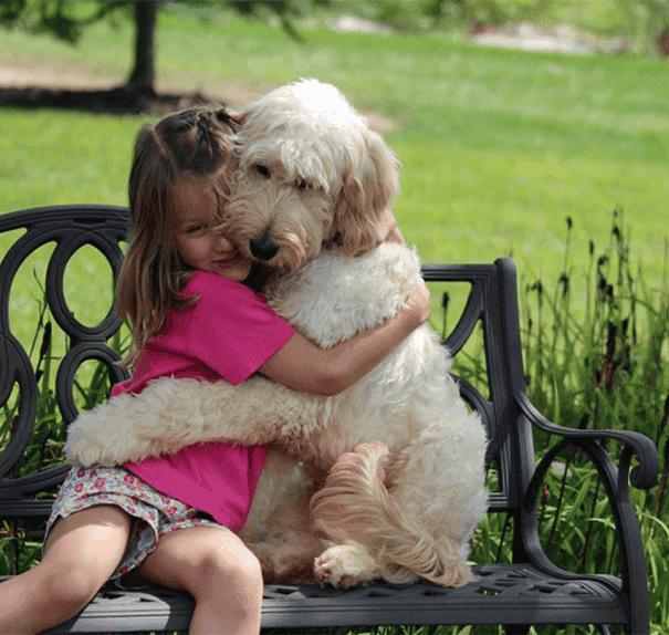 abrazo-perro3