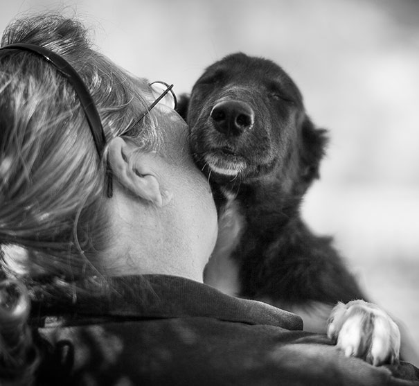 abrazo-perro6