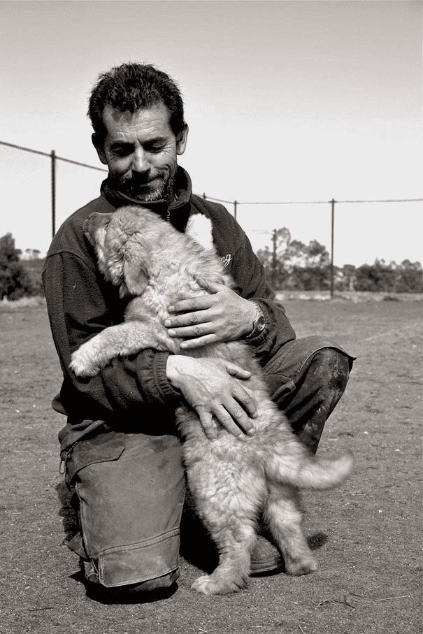 abrazo-perro9