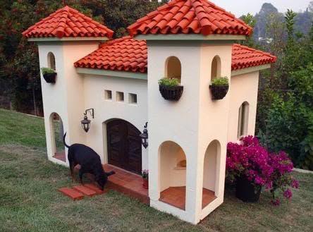 casitas de perros10