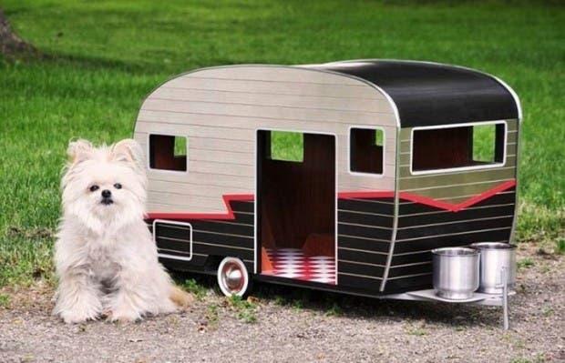casitas de perros2