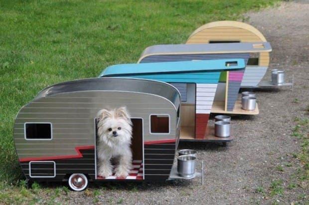 casitas de perros3