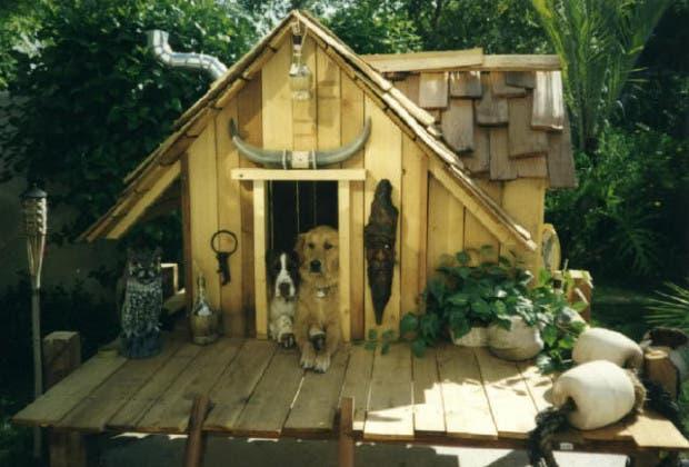 casitas de perros4
