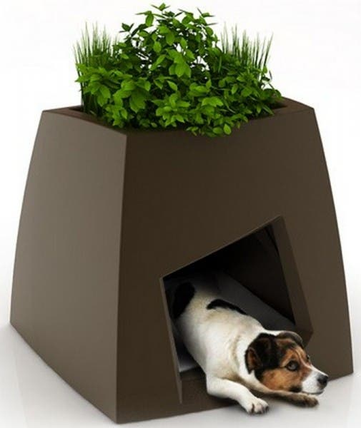 casitas de perros5