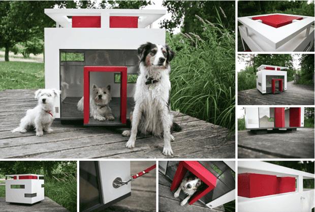casitas de perros9
