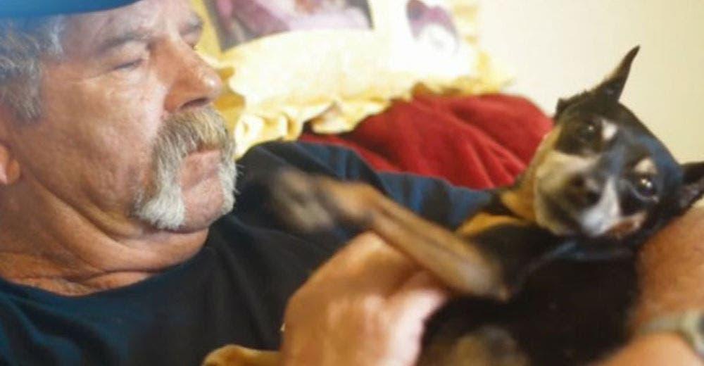 Su perrita le salva la vida en 2 ocasiones advirtiéndole que tenía un tumor cerebral