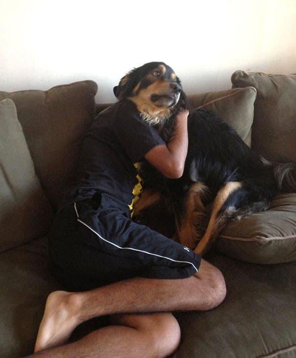 perros divertidos21