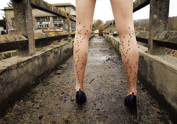 calzas -creativas3