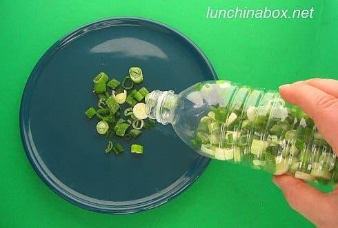 conservar alimentos2
