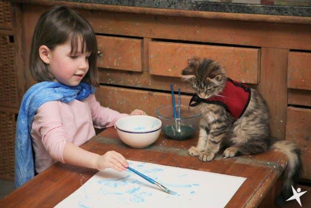 gato terapia1